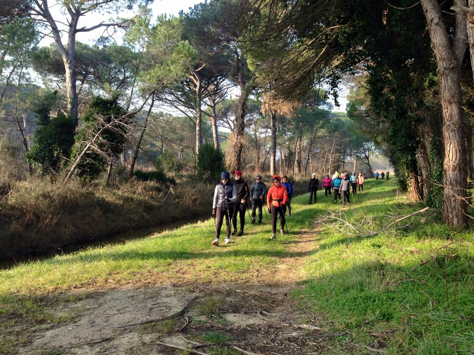 Nordic Walking In Tour il primo campionato di Nordic Walking ...